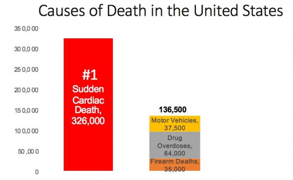Causes of Death in United States   Rick Smith, The End of Killing